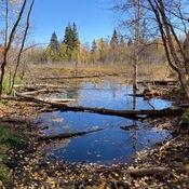 Elk Island Park, Alberta