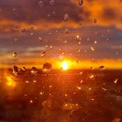 rain fall sunset