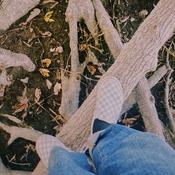 saute saute à pieds joins petit ours brun