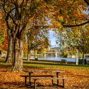 Fall here in Ottawa