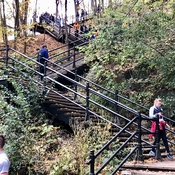 Stairs on Mount Royal