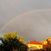 rainbow @8:15 a.m. in Thornhill