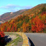 Cabot Trail Colours