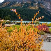 Autumn in Banff.