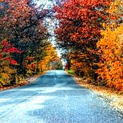 colourful road