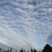 Mackerel clouds