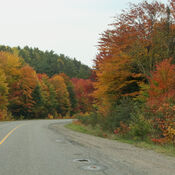Stunning Fall Colours