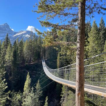 Blackshale Creek Suspension Bridge
