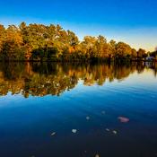 Lake Lisgar