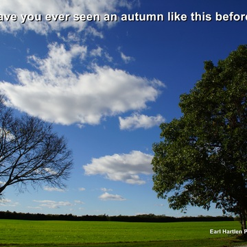 A Different Autumn