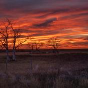 October Ranchlands