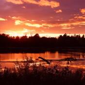Sunset near Ingleside Ontario