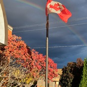 Kamloops rainbow