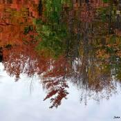 Reflet d'octobre....