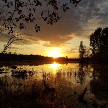 Mud Lake sunset
