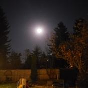 The Hunter's Full Moon