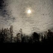 Beautiful Hunter Moon
