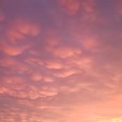 mamoth clouds