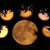 Lune du chasseur , Plein lune d'octobre
