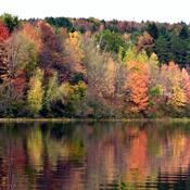 L'automne et ses couleurs.....