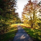 Les belles couleurs de l'automne canadien.