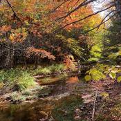 Dobson Trail