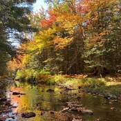 Dobson Trail Fall