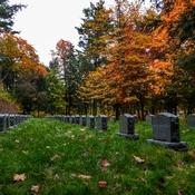 Monastic cemetery.