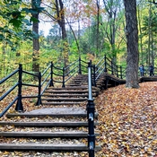 Stairs on Mount Royal in Autumn 🍂
