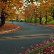 Un bel automne de couleurs