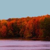 Fall scenery at Long Sault Parkway