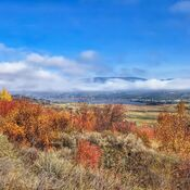 Fall colours on the Grey Canal Trail, Vernon B.C.