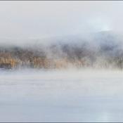 Fog on Elliot Lake.