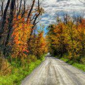 Side road beauty