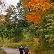 Oct 23 2021 Love in Autumn -William Baker Trail North York