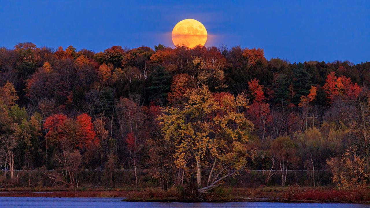 Hunter Moon October 2021