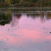 Sunset at Mud Lake