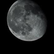 Bright Light Moon