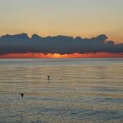 Goodmorning/sunrise