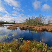Fall lake near Moncton