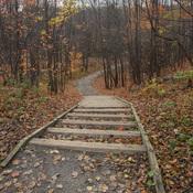 Promenade dans les parcs en automne