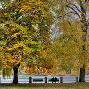 At Lakeside park