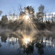 Morning paddle 2
