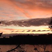 Kelvin-Helmholtz Clouds