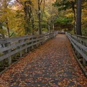 passage de l'automne..