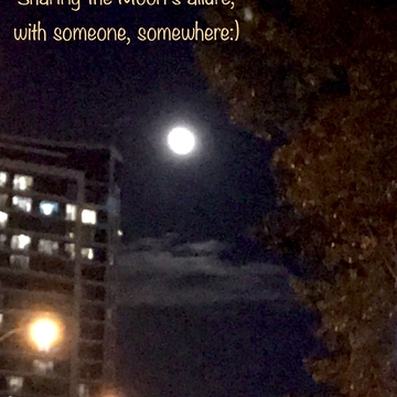 Sharing the Moon's Allure with Someone, Somewhere:)