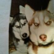 My 2 Best Buddies