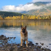 Fall Time in Revy.