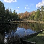 Douglas pond