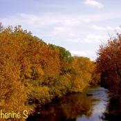 Autumn Landscape - On Loan From Heaven